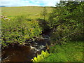 NN2741 : Allt Orain, near Bridge of Orchy by Malc McDonald