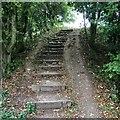 NY3958 : Steps by David Liddle