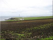 ND3074 : Maligoe Farm, East Mey by David Purchase