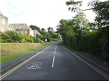 SN5981 : Road to The National Library of Wales by Adrian Cable