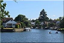 TQ1667 : Thames Ditton Island by John Myers
