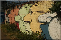 TQ3784 : View of a wall of street art on the River Lea Navigation #3 by Robert Lamb