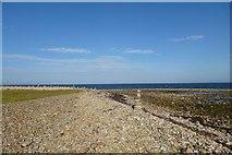 NU1341 : Along the beach near Castle Point by DS Pugh