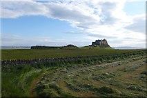 NU1341 : Castle over cut fields by DS Pugh