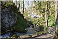 SD9163 : Gorge below Janet's Foss by N Chadwick