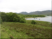 NC4652 : Small bay on Loch Hope by David Purchase