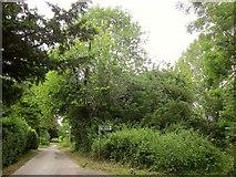 ST9929 : Path from Church Lane, Fovant by Derek Harper
