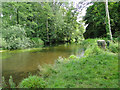 TG2619 : The River Bure downstream of Horstead Mill by Adrian S Pye
