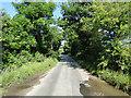 TG3822 : Plumsgate Road, Catfield by Adrian S Pye