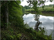 SK0220 : The River Trent near Bishton by Mat Fascione