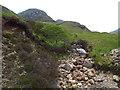 NM8978 : Allt na h-Innse Buidhe, near Glenfinnan by Malc McDonald