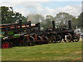 SO6452 : Bromyard Gala - steam engine line up by Chris Allen