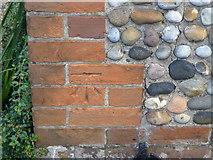 TF6830 : Cut Mark 23 Chapel Rd Dersingham by Monica Stagg