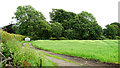 NY0602 : Farmland Near Gosforth by Peter Trimming