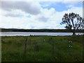 NC2610 : Rushy ground by Loch Borralan by Alpin Stewart