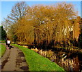 ST3090 : Joggers on a canal path, Newport by Jaggery