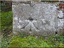 TL7835 : Ordnance Survey Cut Mark with Bolt by Peter Wood