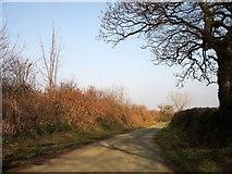 SX2792 : Farm lane to Tascott by Derek Harper