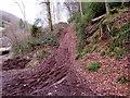 SO5306 : Steep muddy track, Whitebrook by Jaggery