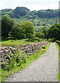 NY1700 : Bridleway at Dalegarth by Peter Trimming