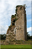 S1133 : Castles of Munster: Ballydoyle, Tipperary (3) by Mike Searle