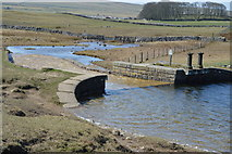 SD8966 : The start of Malham Water by N Chadwick