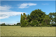X1097 : Castles of Munster: Norrisland, Waterford (1) by Mike Searle
