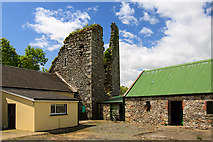 S8713 : Castles of Leinster: Kilcavan, Wexford (2) by Mike Searle