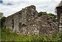 S7616 : Castles of Leinster: Rathumney, Wexford (1) by Mike Searle