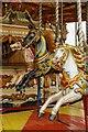 SU6479 : Horses on the Ride by Bill Nicholls