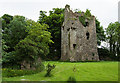 S0180 : Castles of Leinster: Ballinlough, Offaly (1) by Mike Searle