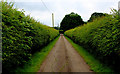 SE4560 : Access Lane Heading away from Low Farm by Chris Heaton