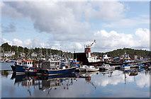 NR8668 : Tarbert harbour, Loch Fyne by The Carlisle Kid