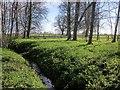SE3854 : Drainage channel, High Wood by Derek Harper
