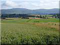 NY6226 : View over the Eden valley from Priest Lane by Oliver Dixon