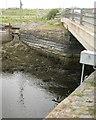 SN6193 : Abutments of the Pont Aber Leri, Ynyslas by Robin Stott