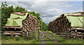 SD7744 : Two log piles by Ian Greig