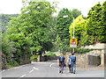 SE0822 : Walking to the Tour - Copley Lane by Stephen Craven