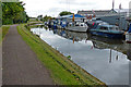 SJ8844 : Dolphin Boatyard on the Trent & Mersey Canal by Mat Fascione