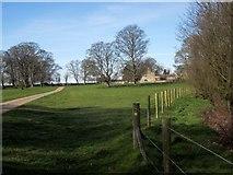 SE3953 : Ribston Park by Derek Harper