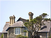 SX5547 : Chimneystacks at Rowden Court by David Smith