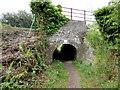 SN3607 : Very low railway bridge, Tanylan near Kidwelly by Jaggery