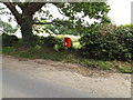 TG1719 : Marsham Lodge Holt Road Postbox by Adrian Cable