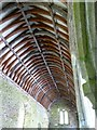 SX5646 : The roof of the south aisle, ruined church at Stoke by David Smith