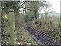 SO5873 : Cumberley Lane by Hugh Craddock