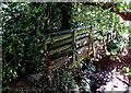 SO3509 : Narrow wooden footbridge over Clawdd Brook, Clytha Estate by Jaggery