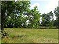 TQ3227 : Little Meadow by Simon Carey
