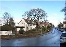 SO6024 : Gloucester Road, Ross on Wye by Des Blenkinsopp