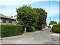 TM1520 : Mill Lane, Weeley Heath by Malc McDonald