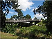 SJ6855 : Queen's Park: footbridge, side view by Stephen Craven